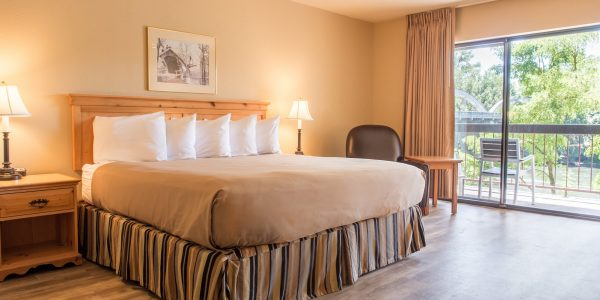 Pet Friendly King room at Riverside Inn
